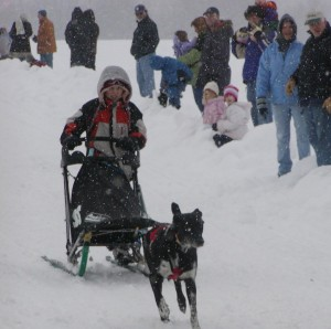 Dog Sled 4 kid