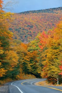Highway and fall foliage in White Mountain