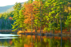 romantic cruise with Fall foliage reflected in lake