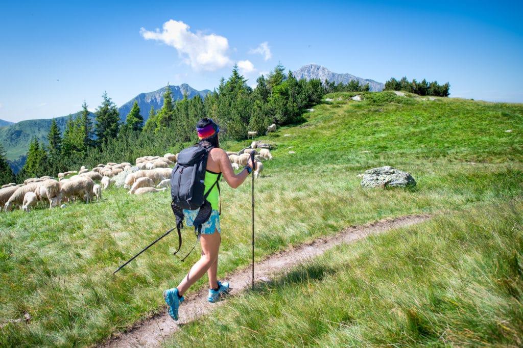 Visit Gunstock Mountain Resort This Summer
